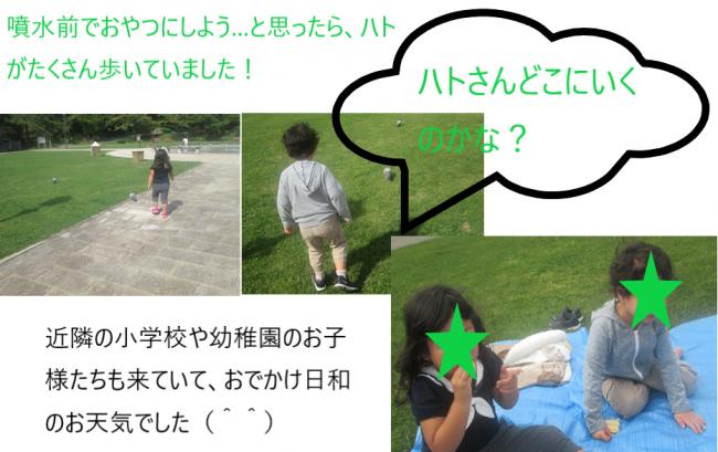 函館公園2