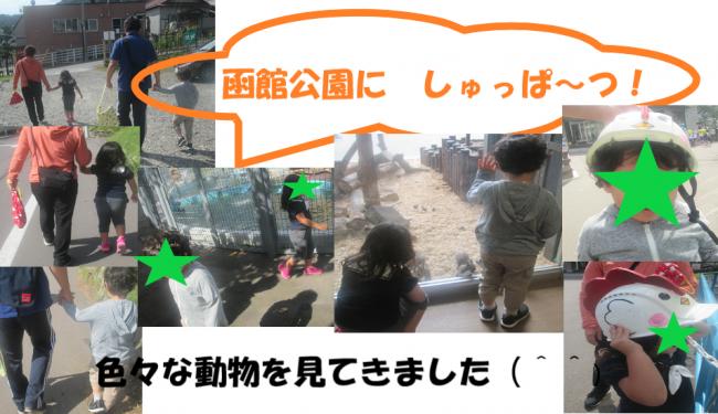 函館公園1